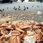 Hergün -6 –Milyon Ekmek Çöpe Gidiyorsa